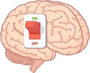 Brein aan